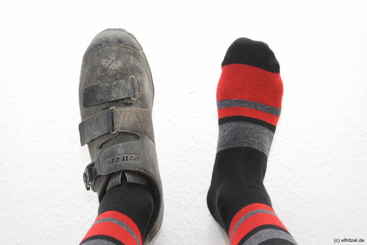 elfritzel-giro-merino-seasonal-wool-sock-terraduro